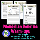 Mendelian Genetics Bell Ringers, Warm-ups, or Exit Slips {