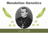 Mendelian Genetics - Dominant & Recessive Traits, Punnett Squares (Editable)
