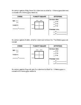 Mendelian Genetics Practice - Punnett Squares by The Owl's Count