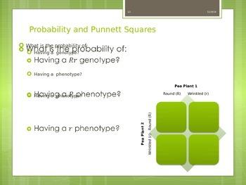 Mendelian Genetics and Single Trait Inheritance