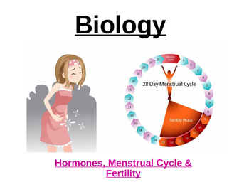 Menstrual Cycle Power point
