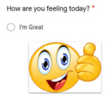 Mental Health Wellness Check-In Google Form (private)