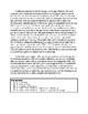Mentor Informational Essay