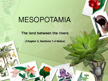 Mesopotamia Ancient Civilizations Chapter 3 Sections 1-4 Notes