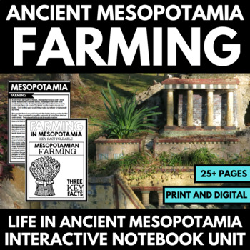 Ancient Mesopotamia Activities