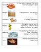 Mesopotamia Vocabulary Cards