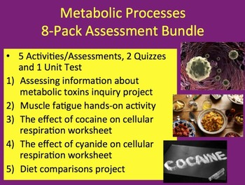 Metabolic Processes Bundle - 5 Activities, 1 Project, 2 Quizzes and 1 Unit Test