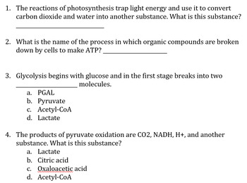 Metabolic Processes QUIZ- Glycolysis/Krebs/Lactic Acid Fermentation