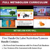 Metabolism Activities for Photosynthesis and Cellular Respiration