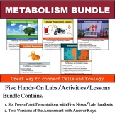 Metabolism Unit - Five 90min Lessons and Labs Bundle with Assessment