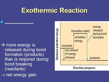Metabolism: Energy In Chemical Reactions - Biology PowerPoint Lessons & Notes