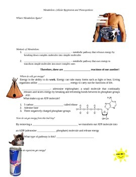 Metabolism Photosynthesis Cellular Respiration Guided Note