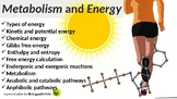 Forms of Energy PowerPoint Presentation