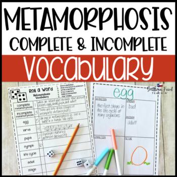 Metamorphosis Fun Interactive Vocabulary Dice Activity EDITABLE