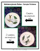 Metamorphosis-Charts/Diagrams/Activities for Anchor Charts/Interactive Notebook