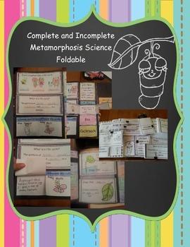 Metamorphosis Foldable
