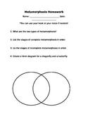 Metamorphosis Handout Worksheet Homework Review Butterfly