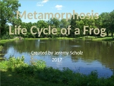 Metamorphosis - Life Cycle of a Frog