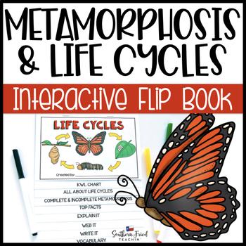 Metamorphosis & Life Cycles Interactive Flip Book