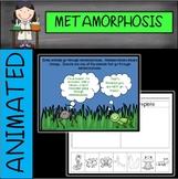 Metamorphosis Animated PowerPoint