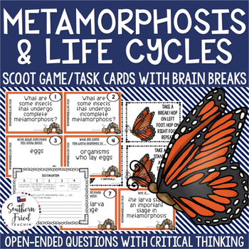 Metamorphosis & Life Cycles