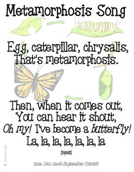 Metamorphosis Song, Butterfly Unit