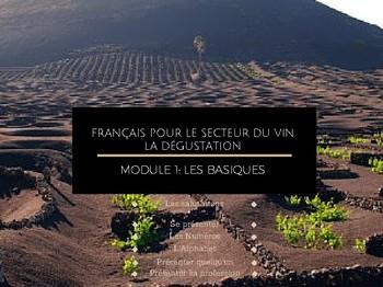 Méthode TIIC Studios Apprendre le français du vin MODULE 1 LES BASIQUES