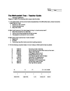 Methuselah: The Trees Remember