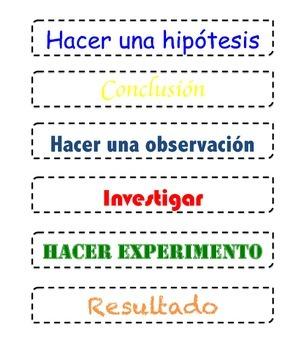 Metodo cientifico
