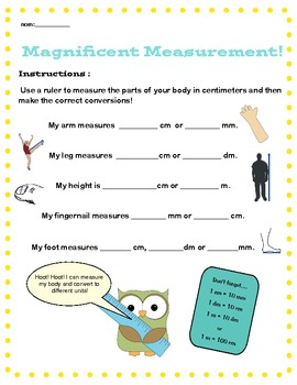 Metric Measurement & Conversion