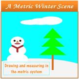Metric Winter Scene