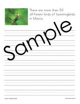 Mexico Unit - Copywork - Print and Cursive - Handwriting