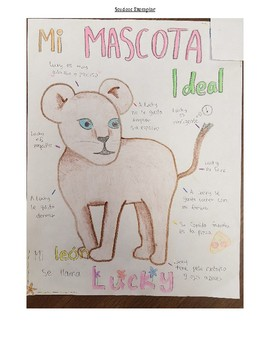 Mi Mascota ideal - Spanish My Ideal Pet