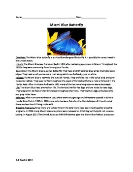 Miami Blue Butterfly - Review Article Questions Vocabulary Word Search
