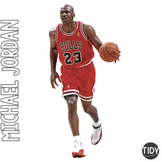 Michael Jordan Pebble Go Hunt
