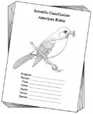 Michigan State Bird Notebooking Set (American Robin)