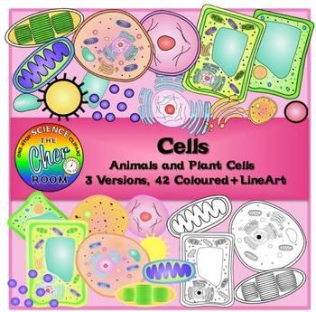 Micro Biology Clipart Bundle