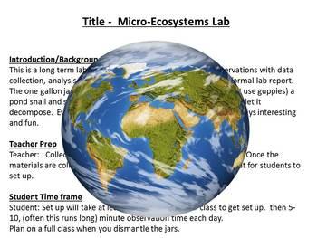 Micro-Ecosystem Lab