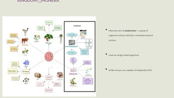 Microbes structure, benefits, diseases