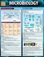Microbiology - QuickStudy Guide