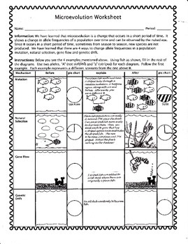 Microevolution worksheet
