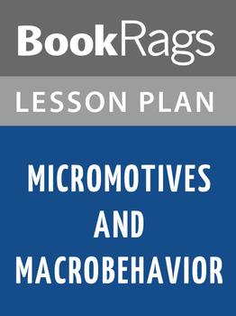 Micromotives and Macrobehavior Lesson Plans