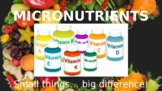Micronutrients Powerpoint - Vitamins & Minerals Explained