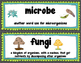 Microorganism Vocabulary Cards for Science Word Wall with pictures