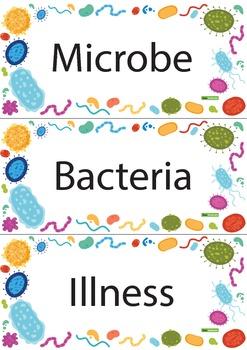 Microorganism Vocabulary Word Wall