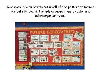 Microorganisms Bulletin Board Set
