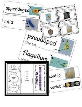 Introduction to Microorganisms Bundle (6th-8th Grades)
