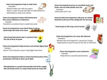 Microorganisms - Helpful and Harmful Chart