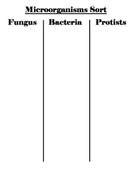 Introduction to Microorganisms Vocabulary Word Sort