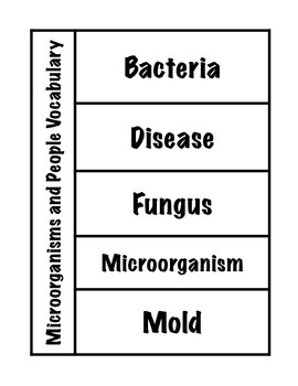 Microorganisms and People Vocabulary Interactive Foldable